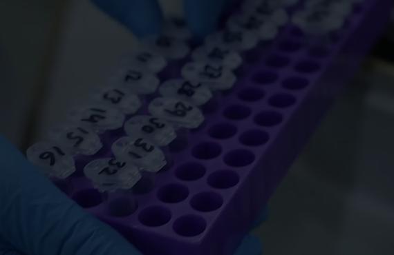 Citi Lab PCR Sample Rack